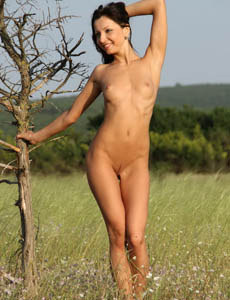 Naked hot brunette Karrina in the field showing her natural beauty with the nipples puffy