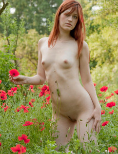 Exciting perfect body nude young tall Nadi is in the field among red flowers