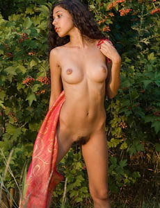 Hairy pussy latin chick Kaisa nude at the nature
