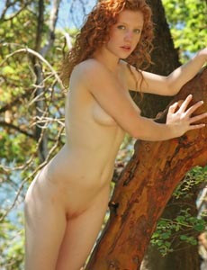 Sexy Ginger on the tree in the forest